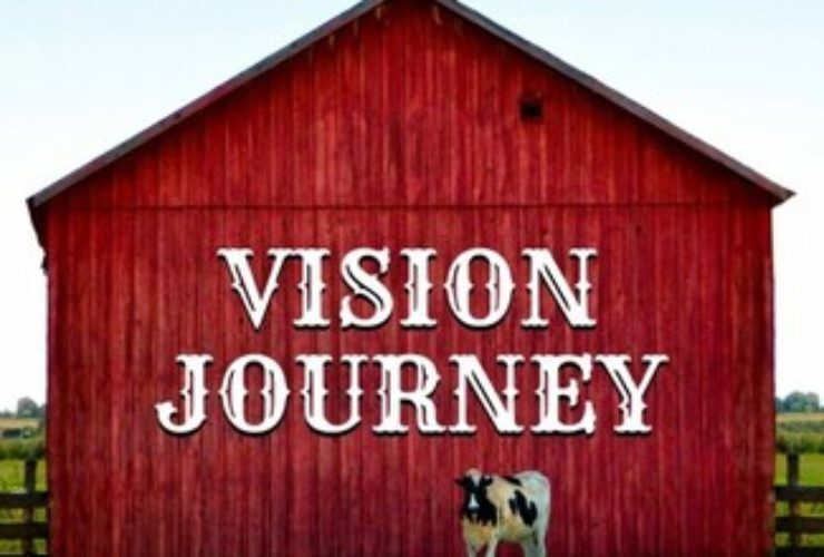 Next Steps on the Vision Journey
